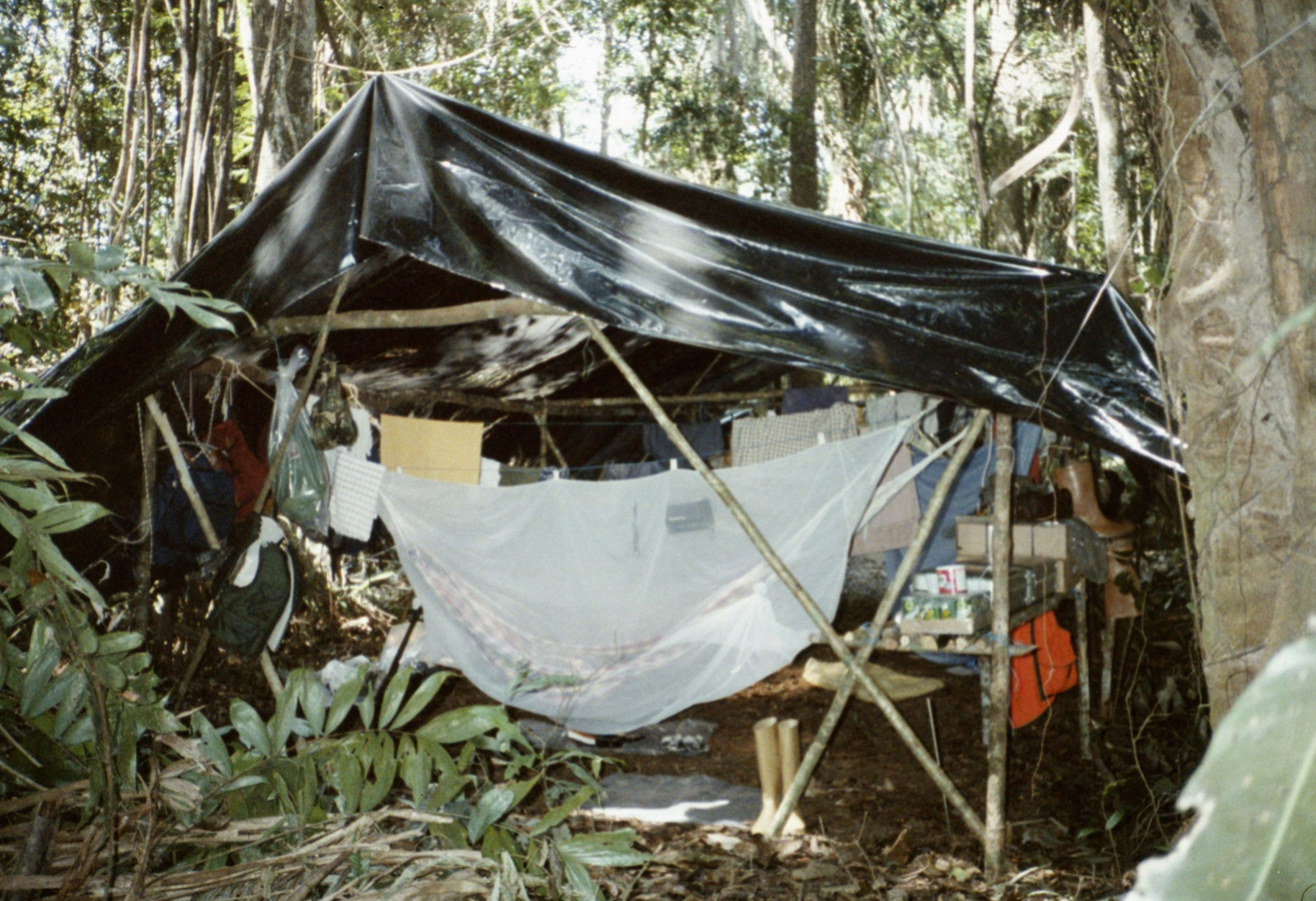Jungle Camp, Piston de Uroy, Venezuela